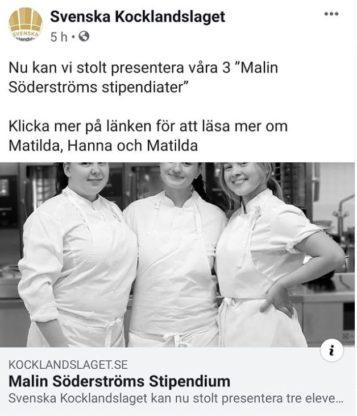TG-elev tilldelas Malin Söderströms stipendium